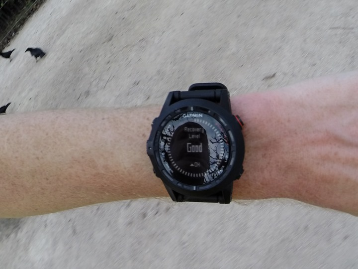 Garmin Fenix2 Recovery Level