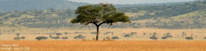 TanzaniaHeadeWithText