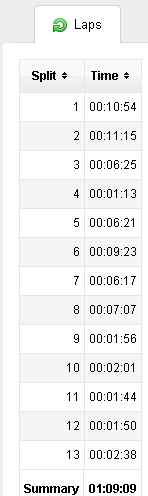 FR-60 Lap Count in Garmin Connect