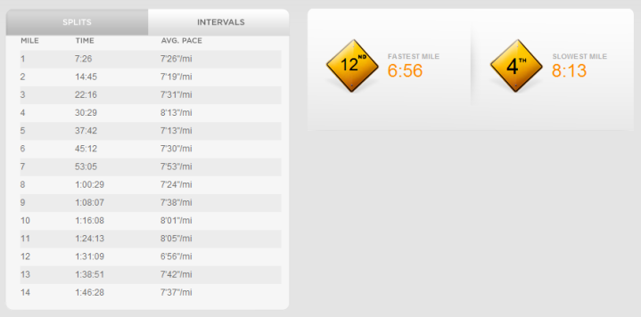 Nike+ GPS Website Run Review Lap/Splits
