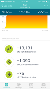 Fitbit-Surge-Run-App-Overview-Steps