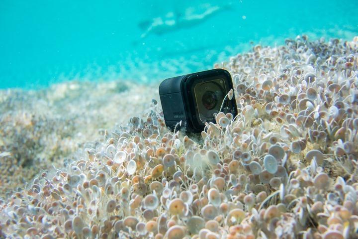 GoPro-Hero4-Session-Submerged