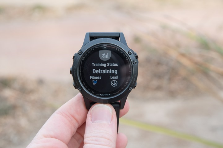 Garmin-Fenix5-TrainingData1
