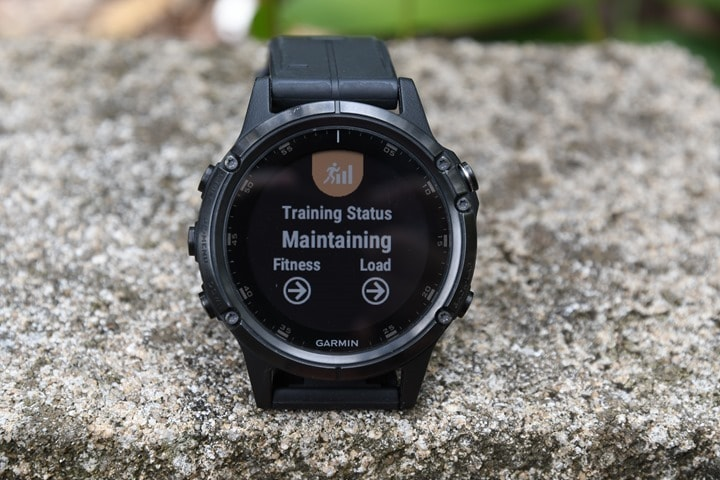 Garmin-Fenix5-Plus-TrainingStatus