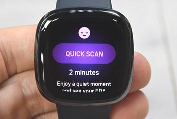 Fitbit-Sense-Quick-EDA-Scan